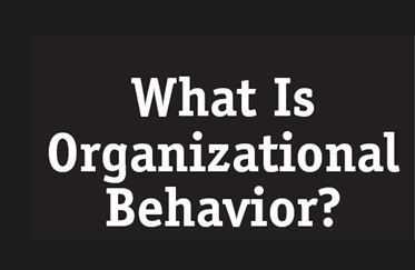 organizational behavior assignments