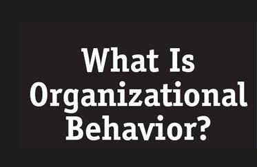 Introduction on Organizational Behavior