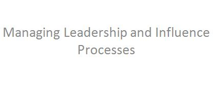 Managing Leadership and Influence Processes