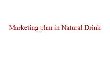 Term paper on Marketing plan in Natural Drink