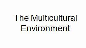 Lecture on The Multicultural Environment