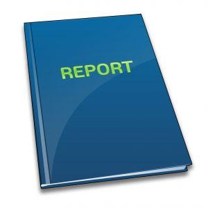 Prepare a Report