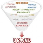 Measuring Sources of Brand Equity: Capturing  Customer Mind-Set