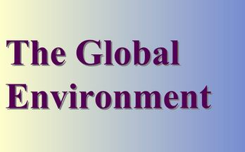 The Global Environment
