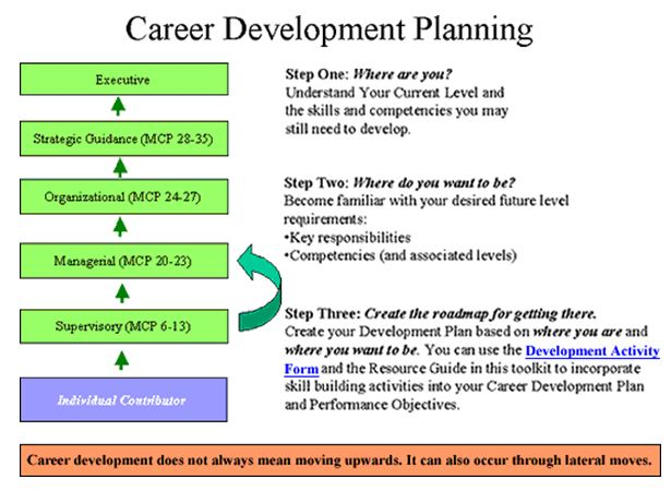 five year career development plan essays