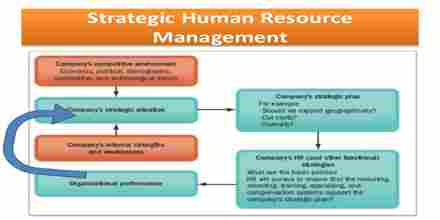 Strategic Human Resource Process in One Bank Limited