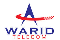 Internship Report on WARID Customer Service