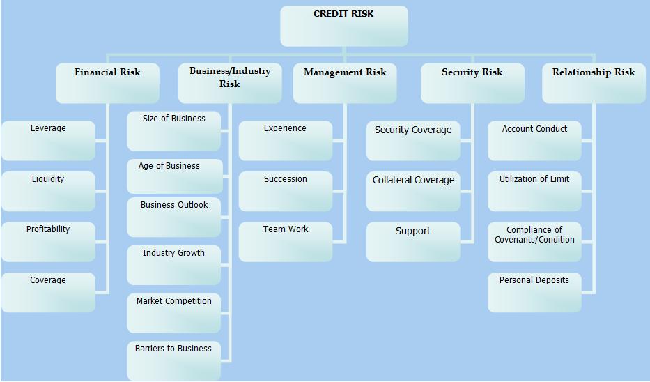 Risk Management - Nc State University