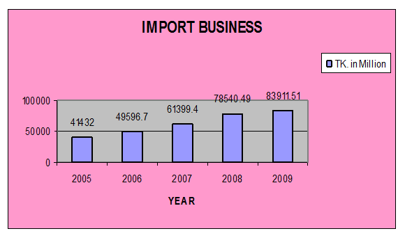 2009 import business