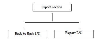 Export Section