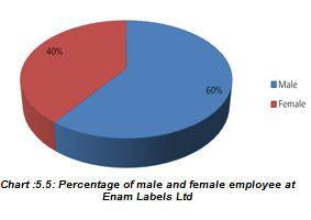 Percentage of male and female employee at
