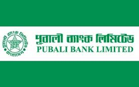 Report On Finance Analysis Through Ratios of Pubali Bank
