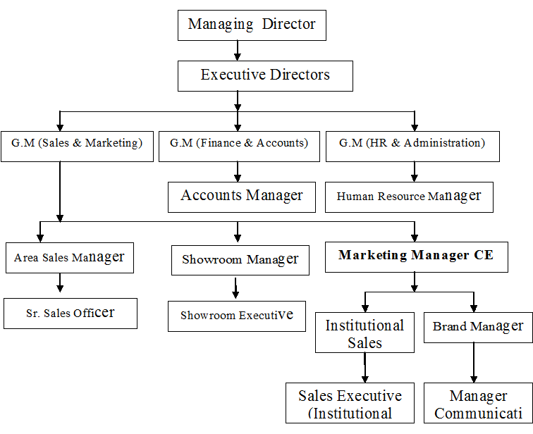 sales and marketing department structure