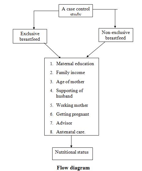 case-study-flow-diagram