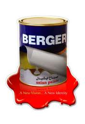 Report on Overall Business of Berger Paint