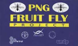 Some IPM Approachs for the  Management of CUCURBIT Fruit fly