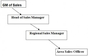 Hierarchy of Sales Force