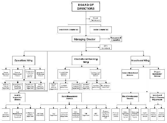 Organization of AIBL