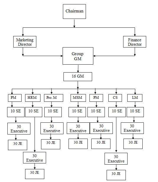 Organizational Structure of Shamsul Alamin Group
