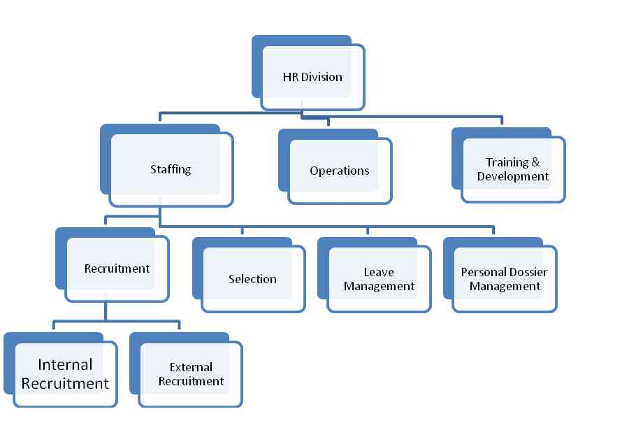 Units in HR Division