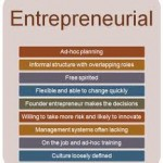 Report on Entrepreneurial Challenges