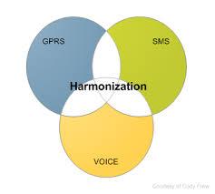 Report On International Conference on the Harmonization