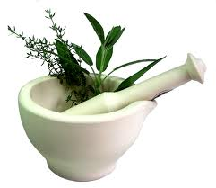 Medicinal Plant of Bangladesh That Effect the Reproductive System