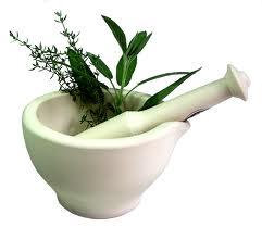 Medicinal Plant of Bangladesh
