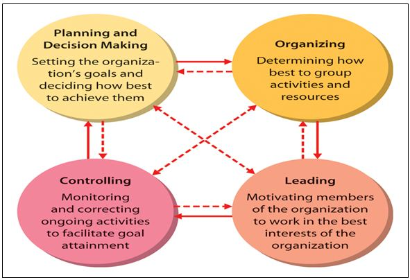 term paper organizing function of management