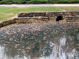 Report on Implementation Possibilities of Retention Ponds