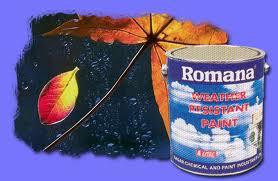 Report on Romana Paint Company Ltd