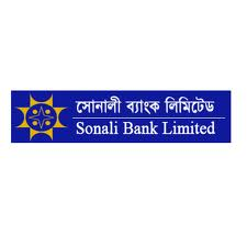 Internship Report on Financial Performance Analysis of  Sonali Bank Limited