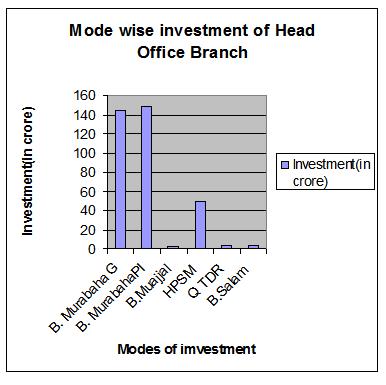 Investment Portfolio of the sample