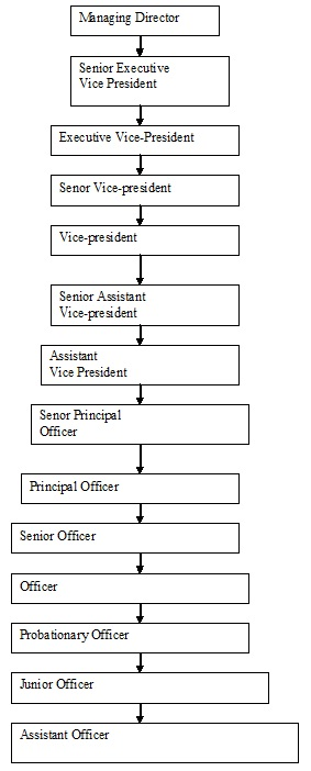 Organizational Structure of NCCBL
