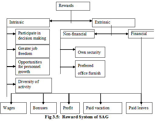 Reward System of SAG