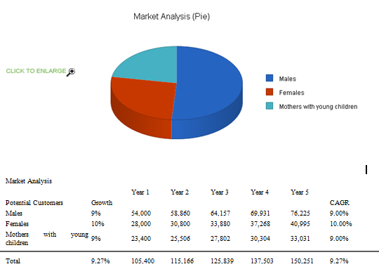 What is a market analysis in a business plan
