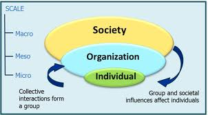 Report on Multitude of Social Systems