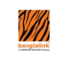 Report on Roles and Responsibilities of Manager in Banglalink GSM Telecom