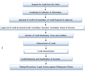 CREDIT APPRAISAL SYSTEM OF DHAKA BANK LTD