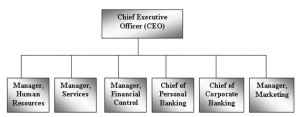 Chief Executive Committee