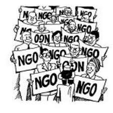 Criticisms of NGOs
