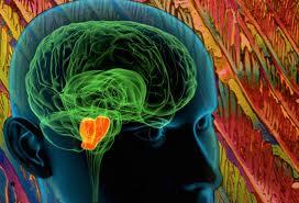 Disorder of Nervous System