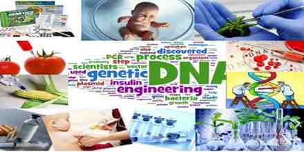 How Pharmaceutical Product Made by Genetic Engineering