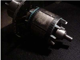 Induction Motor Conversion Alternators