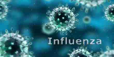 Presentation on Inflenza