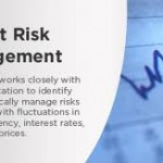 Report on Management of Credit and Foreign Exchange