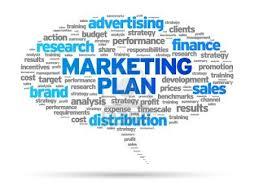 Internship Report on Marketing Plan of a Company