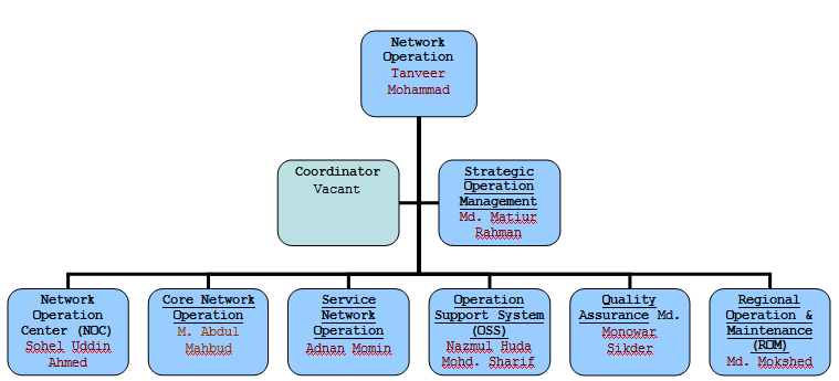 Network Operation Ogranogram