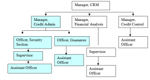Organ gram of  Credit and Risk Management