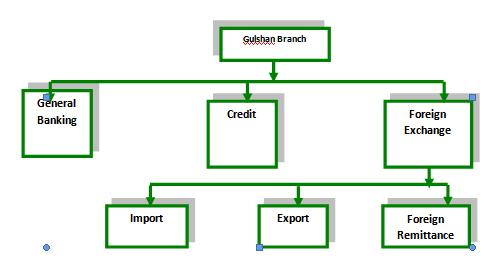 Organization of Gulshan Branch